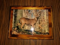 Clear coated Deer Wall Hanging 6.5 inches by 8.5 i Dauphin