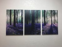 3 piece wall picture Delray Beach, 33445