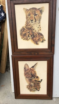 two brown wooden framed painting of cheetah