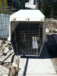 Large dog kennel  Toronto, M4C 3B6