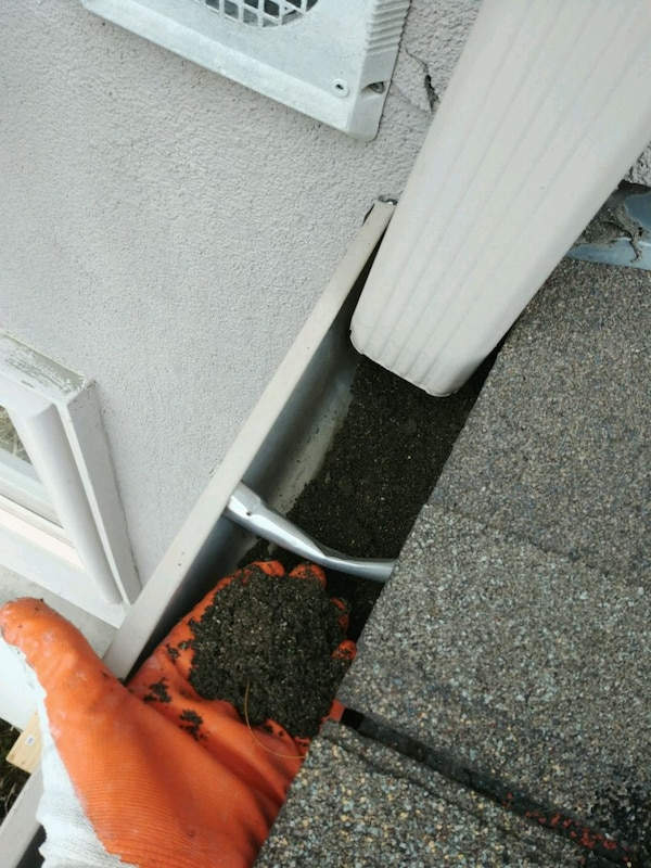 Leaky gutters? Need cleaning? Call today!