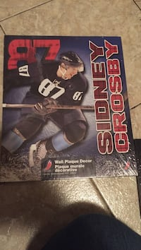Sidney Crosby brand new sealed wall hanging