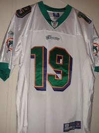green and white NFL #19 jersey shirt Lakeland, 33810