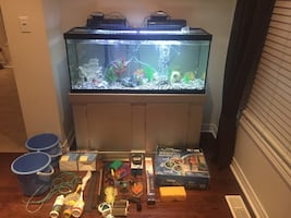 FISH TANK 100 GALLON WITH BEAUTIFUL FISH INCLUDED AND MUCH MORE!!!!!