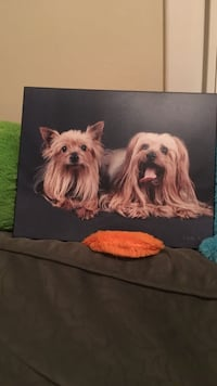 Picture mounted on wood backing