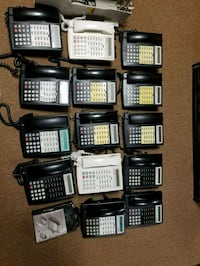 Avaya phones and server Great Neck