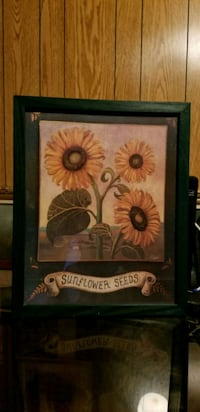 Sunflower Seed Wall Picture - Green Frame - B 17 3 Waldorf, 20602
