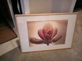Brown wooden framed painting of pink flower 4ftx5f