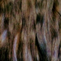 Beautiful traveling  hair extension services  Beltsville