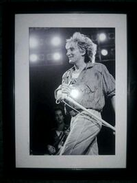 ROD STEWART PICTURE  Redford Charter Township