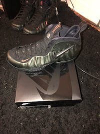 Sequoia air foamposite Takoma Park, 20912