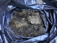 Free top soil Mississauga, L5A 2G6