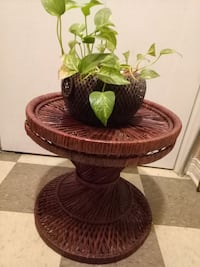brown wicker basket with green leaf plant.