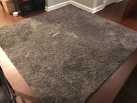 9'X9' Area Rug—From home with cats Laurel, 20708