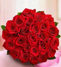 Two dozen red rose!!!!