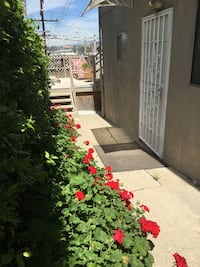 APT For rent 3BR 1BA Los Angeles