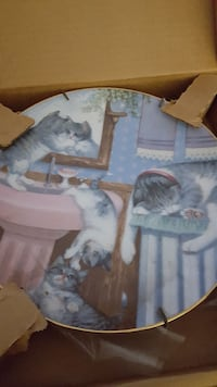 gray and white cat decorative plate.