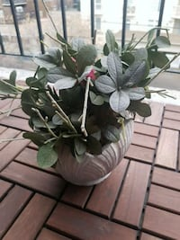 Decor green leaf plant with pot Calgary, T3C 0T3