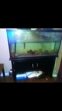 65 gallon tank and stand Memphis, 38106