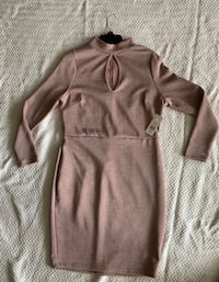 Body Kissing Dress, 1X Silver Spring, 20901