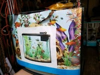 Glass Bow Front Aquarium. New Monrovia, 21770
