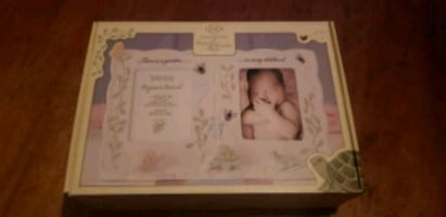 Butterfly meadow baby  pictures  frame