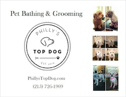 Affordable Pet Grooming & Bathing
