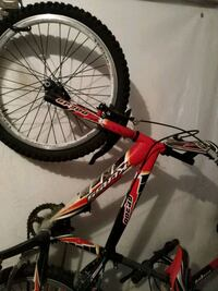 mountain bike rossa e bianca  Ariccia, 00040