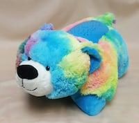Rainbow bear dream lites pillow pet Nokesville, 20181