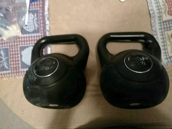 Two 20lb weights