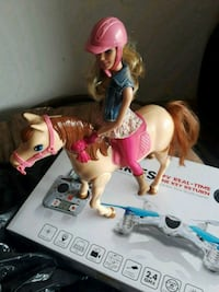 Barbie and walking horse Alexandria, 22304