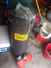 Everlast punching bag w/hanging chain & pair of Everlast boxing gloves