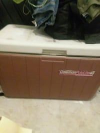 brown and white Coleman cooler box