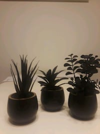 Plants - miniature, artificial. All 3 for $10.