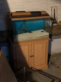 30gallon fish tank