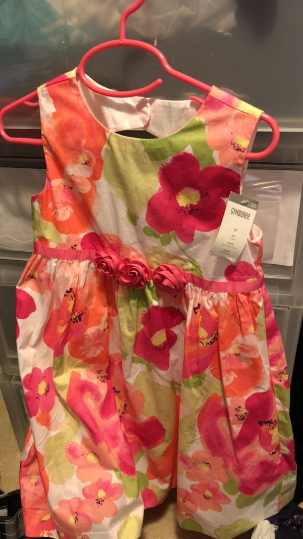 girl's pink, red, and green floral sleeveless dress efe69114-88a8-4afa-8c8c-84f70d653be6