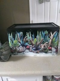 New Terrarium glass cage with lid stocked with lots of extras North Charleston, 29406