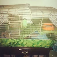 white and green metal pet cage Canton, 48188