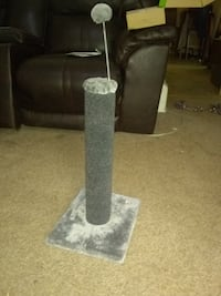 Scratching post brand new cats won't use
