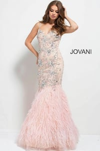 Embellished Blush Pink Feathered Bottom Gown