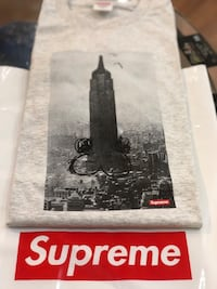 Brand new Ash Grey Supreme Mike Kelley Empire State Tshirt size Xlarge Silver Spring, 20902