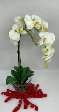 Phalaenopsis / Orchid with Glass Vase Decorative SILK Flower Arrangement Sterling, 20165