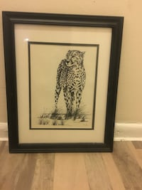C. Marsden-Huggins 21x17 black framed painting/print of Cheetah Washington, 20001