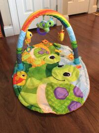 baby's green and blue activity gym Martinsburg, 25404