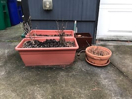 Planters and flower pots for sale