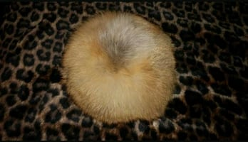 Fox fur hat.