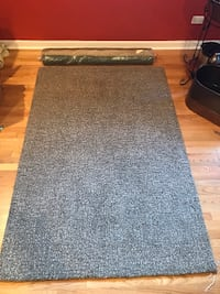 Crate and Barrel area rug Chicago, 60622