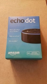 Amazon echo dot Palatine