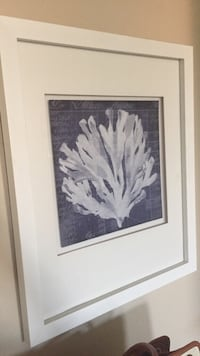 White wooden framed coral painting