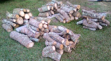 FIREWOOD- WILL DELIVER  FOR A SMALL FEE